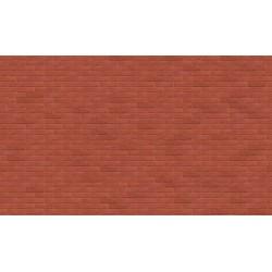 Forum Rojo
