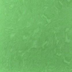 АМБА Зеленый 600х600мм