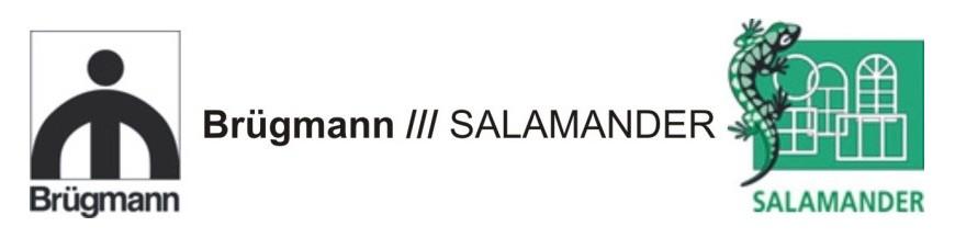 Salamander Brugmann